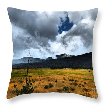 Throw Pillow featuring the photograph Down In The Valley by Thomas Bomstad