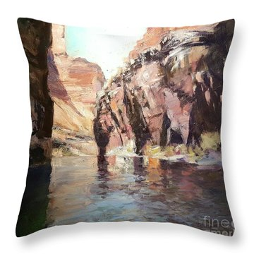 Down Stream On The Mighty Colorado River Throw Pillow
