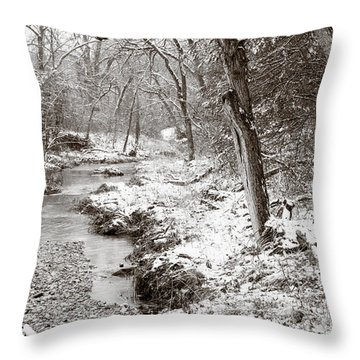 Down The Creek In Winter Throw Pillow by Iris Greenwell
