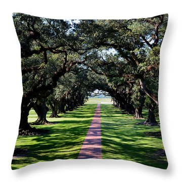 Down The Path Throw Pillow by Maggy Marsh