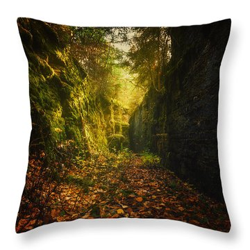 Down The Rabbit Hole Throw Pillow