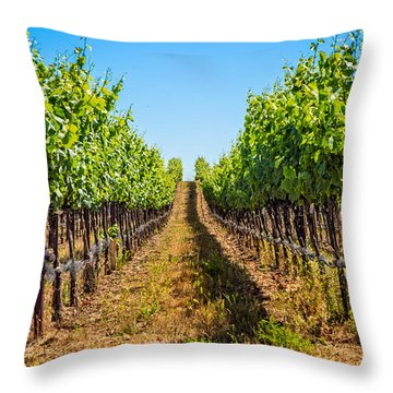 Down The Row Throw Pillow
