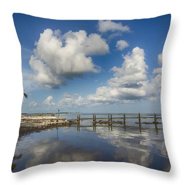 Throw Pillow featuring the photograph Down The Shore by Don Durfee