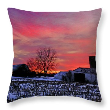 Down The Street From Daranya's House Throw Pillow