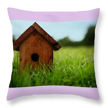 Throw Pillow featuring the photograph Down To Earth by Laura Fasulo