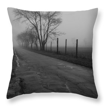 Throw Pillow featuring the photograph Down To The Marsh by Andrew Pacheco