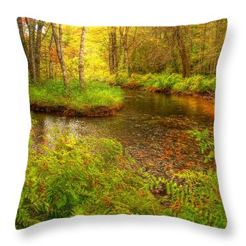 Throw Pillow featuring the photograph Downeast Fall Stream by Alana Ranney