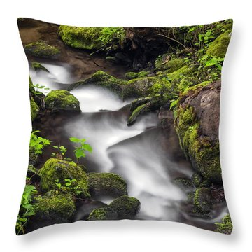 Downstream From The Waterfalls Throw Pillow by Madonna Martin
