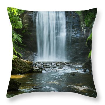 Throw Pillow featuring the photograph Downstream Shade Looking Glass Falls Great Smoky Mountains Art by Reid Callaway