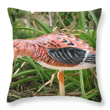 Downward Sanderling Throw Pillow by Kevin F Heuman
