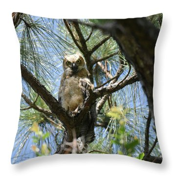 Throw Pillow featuring the photograph Downy Chested Owlet by Sally Sperry