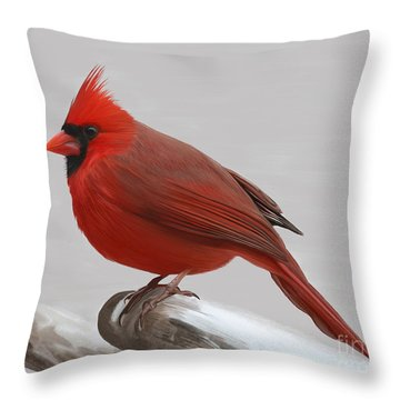 Downy Winter Male Throw Pillow