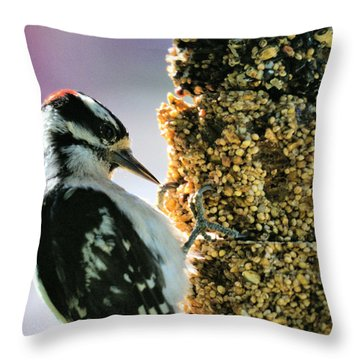 Downy Woodpecker Throw Pillow by Aliceann Carlton