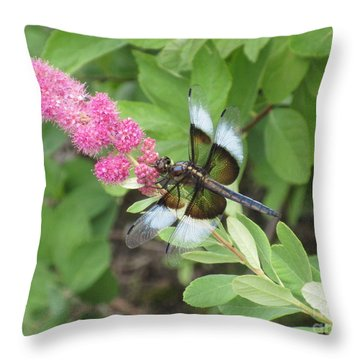 Draggin The Line Throw Pillow by Marie Neder
