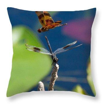 Dragon Fly 195 Throw Pillow