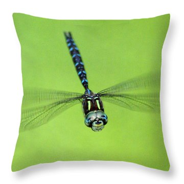 Dragonfly #1 Throw Pillow by Ben Upham III