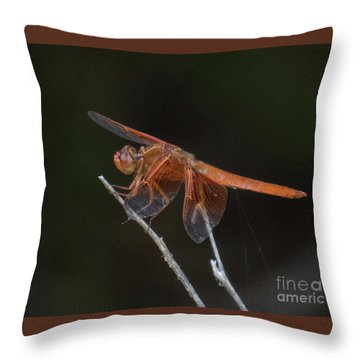 Dragonfly 11 Throw Pillow