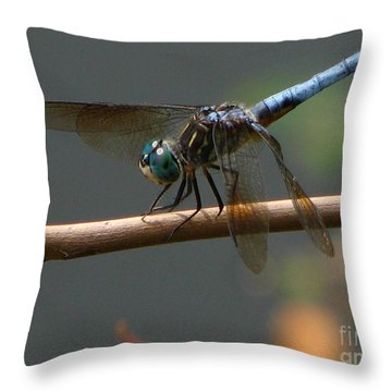 Dragonfly 2010 Throw Pillow