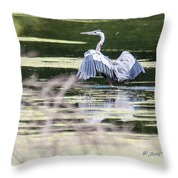 Dragonfly And Great Blue Heron Throw Pillow by Edward Peterson