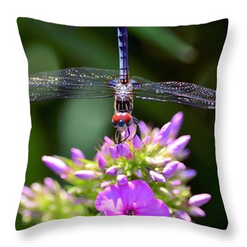 Dragonfly And Phlox Throw Pillow