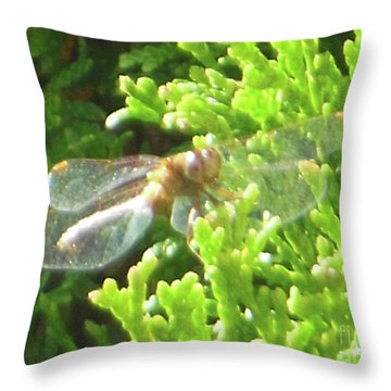 Dragonfly Evergreen Throw Pillow