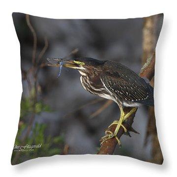 Dragonfly Flip Throw Pillow