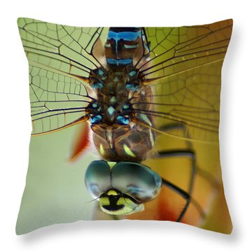 Throw Pillow featuring the photograph Dragonfly In Thought by Ben Upham III