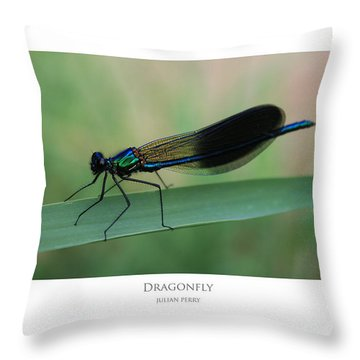 Throw Pillow featuring the digital art Dragonfly by Julian Perry