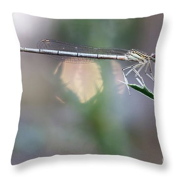 Throw Pillow featuring the photograph Dragonfly On Leaf by Michal Boubin