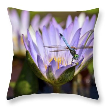 Dragonfly On Purple Waterlily Throw Pillow