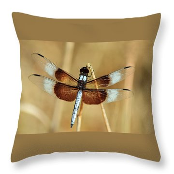 Throw Pillow featuring the photograph Dragonfly On Reed by Sheila Brown