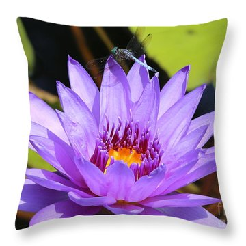 Dragonfly On Water Lily Throw Pillow by Carol Groenen