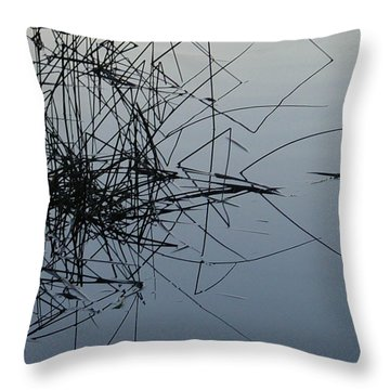 Dragonfly Reflections Throw Pillow