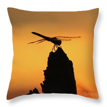 Dragonfly Sunset Throw Pillow