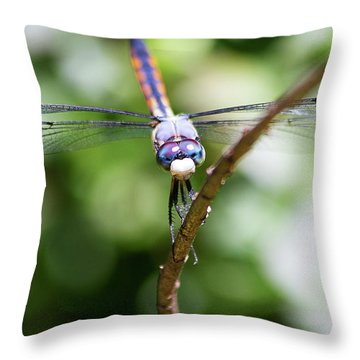 Dragonfly Watching Throw Pillow