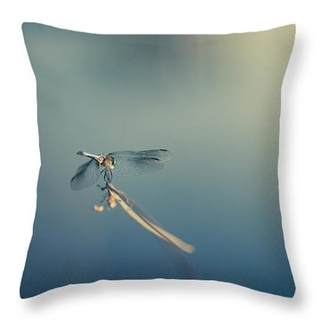 Throw Pillow featuring the photograph Dragonlady by Shane Holsclaw