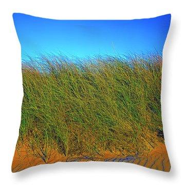 Drake's Island Beach Throw Pillow
