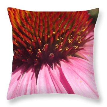 Drama Diva Throw Pillow
