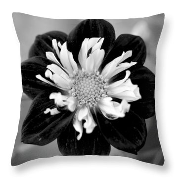 Throw Pillow featuring the photograph Drama Queen by Corinne Rhode