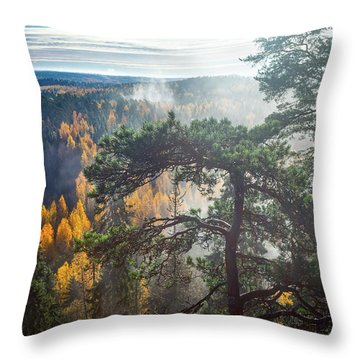 Dramatic Autumn Forest With Trees On Foreground Throw Pillow