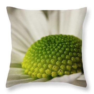 Dramatic Daisy Throw Pillow