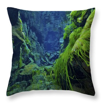 Dramatic Fluorescent Green Algae Throw Pillow by Mathieu Meur
