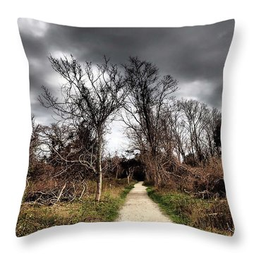 Dramatic Landscape At Elizabeth Morton Throw Pillow