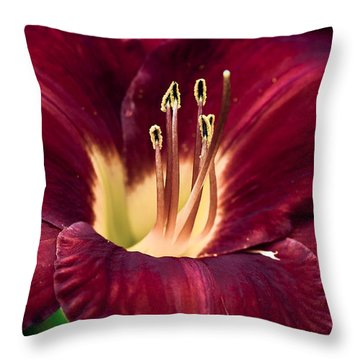 Throw Pillow featuring the photograph Dramatic Lily by Jason Moynihan