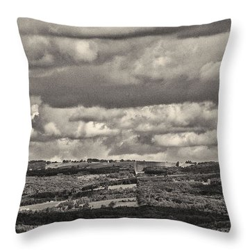 Dramatic Monochrome Vista Throw Pillow