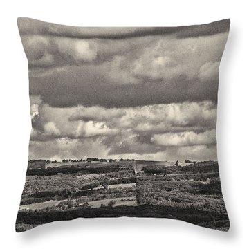 Dramatic Monochrome Vista Throw Pillow