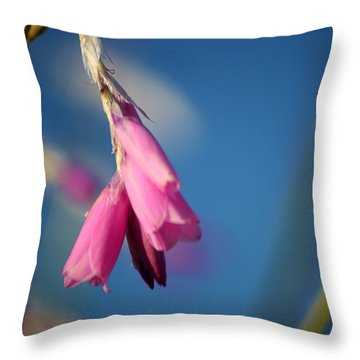 Draped Throw Pillow by Sheila Ping