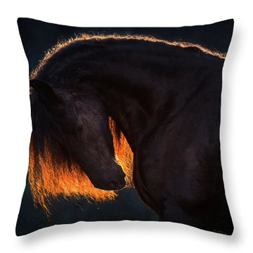 Drawn From The Darkness Throw Pillow