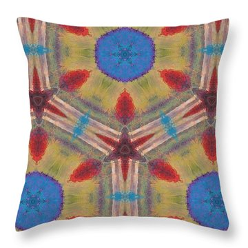 Dream Catcher IIi Throw Pillow by Maria Watt