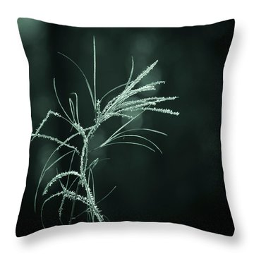 Dream Catcher Throw Pillow by Mary Amerman